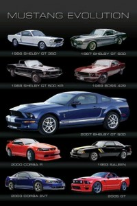 Ford Mustang Evolution